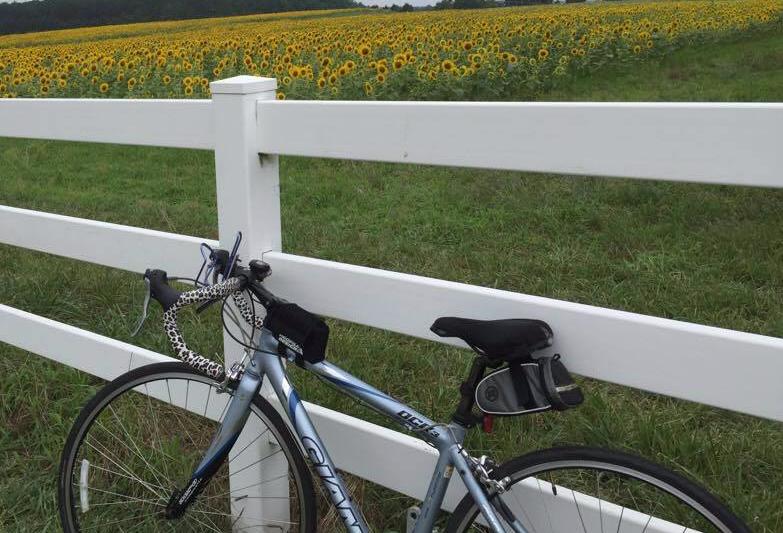 Norman the bike